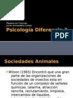 Psicologia Diferencia 3