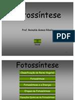 13 fotossintese