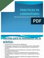 Bioseguridad_PRÁCTSEM1