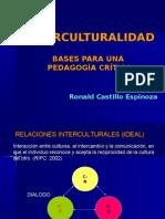 Intercultural Id Ad