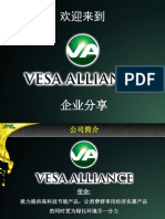 Vesa Chinese Presentation - Final