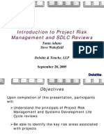 C31 - Intro to Project Risk Management