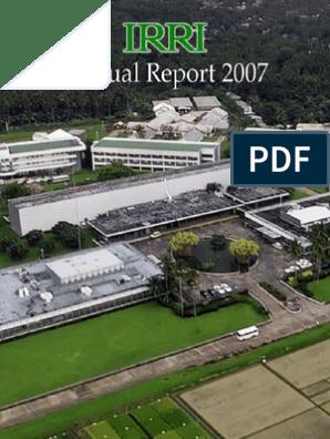 IRRI Annual Report 2007 | International Rice Research Institute | Rice