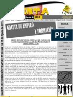gaceta_empleo_opea_043