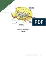 Catatan Neurologi Polri