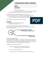 Résumé SPD (intro et judiciaire)