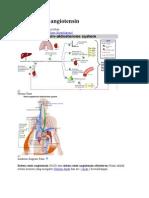 Sistem renin