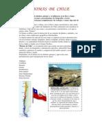Biomas de Chile - 9 Biomas