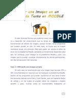 Subir Una Imagen en Un Editor de Texto en Moodle