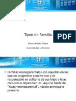 tipos_de_familia[1]