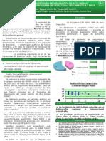Poster Sap 2010 1