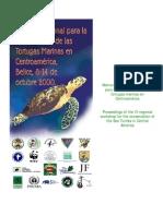 IV Taller Regional Para La Conservacion de Las Tortugas Marinas en Centro America