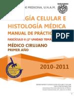Manual Practicas Ut2