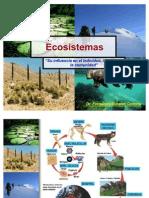 Ecosistemas Cadena Trofica Ciclo Biogeoquimico 2011