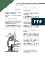 Informe No 1. Microscopio