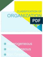 Classification of Organization