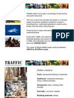 International wildlife trade and the work of TRAFFIC, the wildlife trade monitoring network