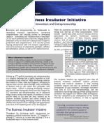 infoDev's Business Incubator Initiative