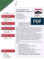 Oracle Database 11g. Kompendium administratora
