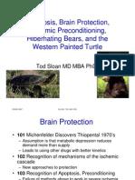 Brain Condition