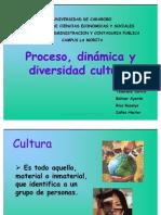 Proceso, Dinmica y Divers Id Ad Cultural 3