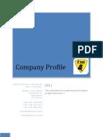 Lbs Company Profile 2010