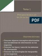 Tema 1 Principios Basicos de Los SI