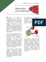 Leucemia Paper