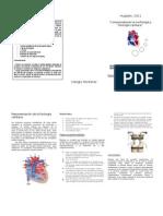 triptico fisiologia cardiaca