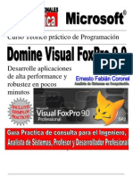 Experto en Visual Foxpro 9 SP2