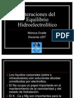 equilibrio hidroelect 2010