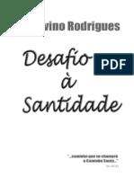 Desafio a Santidade PDF