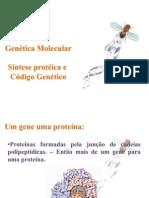 Síntese protéica - FEPECS 13
