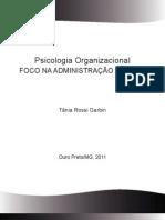 FASCICULO_PSICOLOGIA_ORGANIZACIONAL