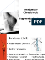 Anatomia Definitiva Tobillo y Pie