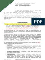 D. Constitucional Aula 03