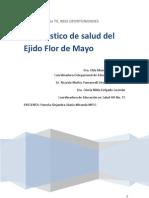 Diagnostico de Salud Flor de Mayo Alanis