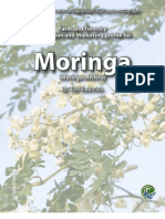 Moringa Specialty Crop