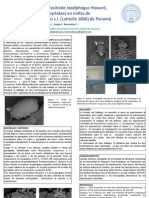 Poster Hallazgo de La Avispa Parasitoide Ixodiphagus Howard