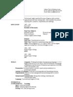 Sample Engineering CV