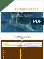 Farmacología Del Sistema nervioso Autonomo