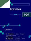 Propedeutica - Gravidez