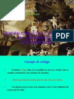 1) Ecologia Ecosistemas Mayo 2011 b