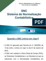 Trabalho de Grupo sobre SNC