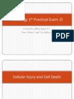 Pathology 1st Practical Exam
