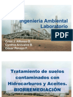 biorremediacion