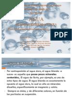 Expo Agua Bdd