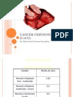 Cancer Cervicouterino (Cacu)