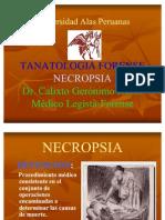 NECROPSIA LEY