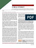 Enterpreneurial Energy